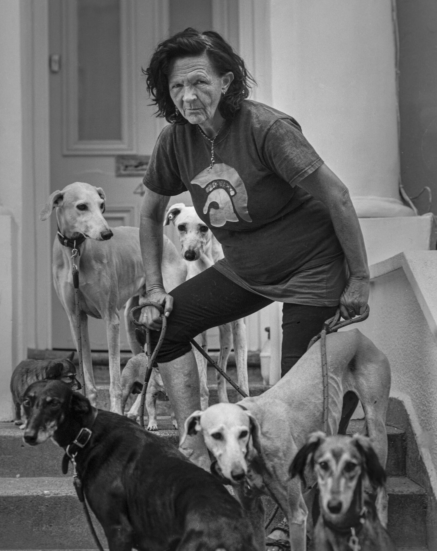 'Saluki Jean' with her Rescue Dogs. London 2019